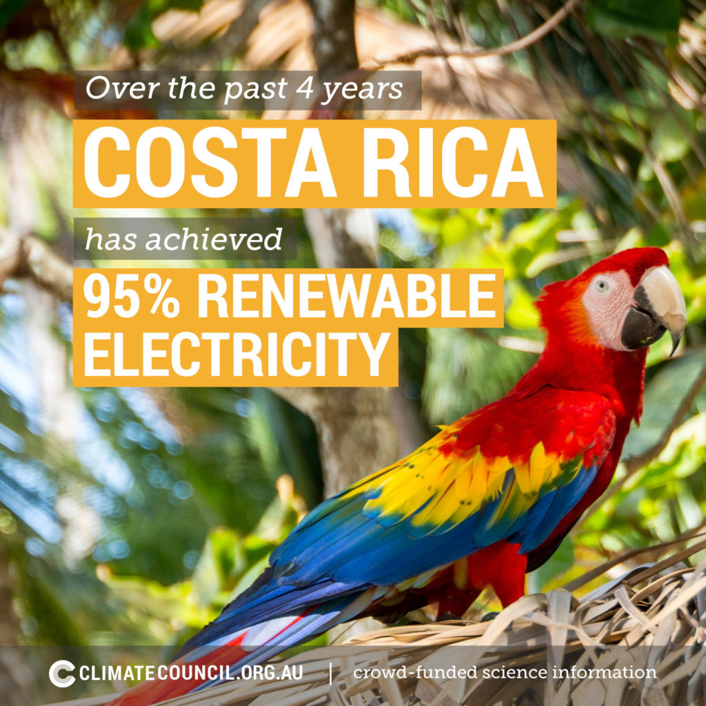A macaw in costa rics showing renewable electricity generation